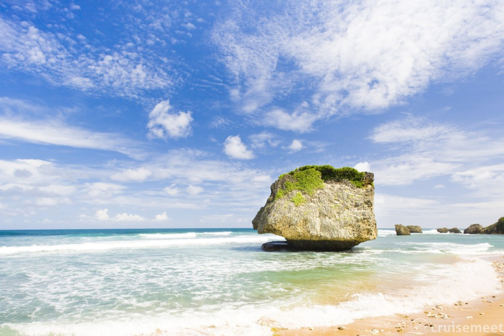 Barbados' East Coast