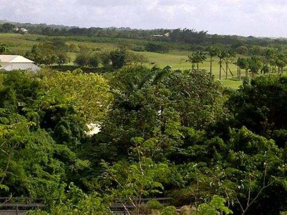 Lot 10 & 10A Royal Westmoreland Resort